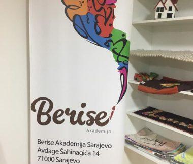 BERISE1